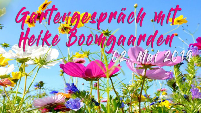 Veranstaltung mit Heike Boomgaarden